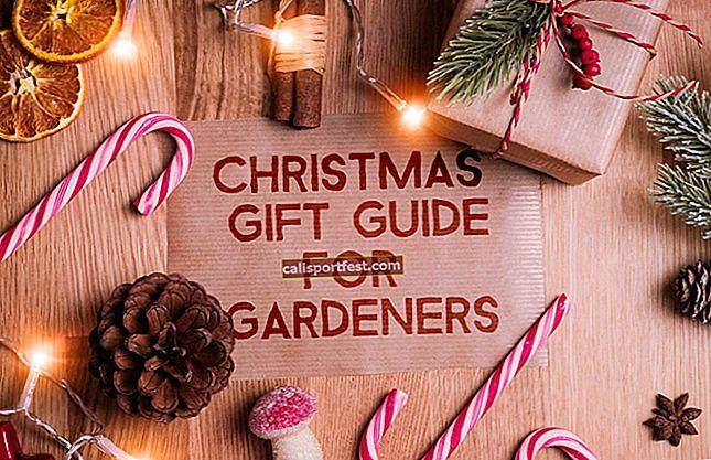 Karácsonyi ajándékötleteket keres? Az iPhone alkalmazások segítenek