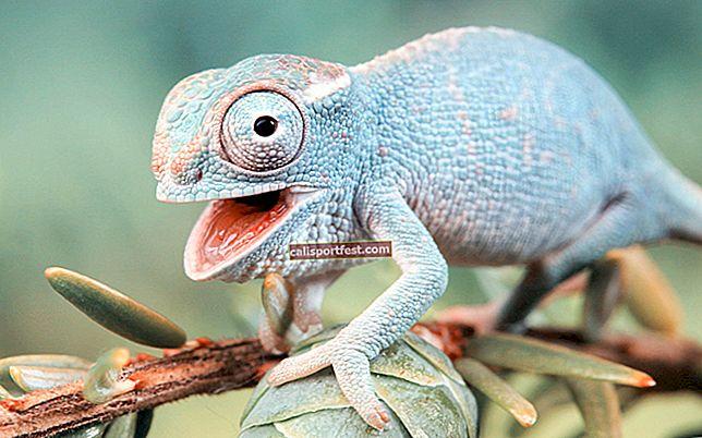 Kako preuzeti Chameleon Run besplatno na iPhone i iPad