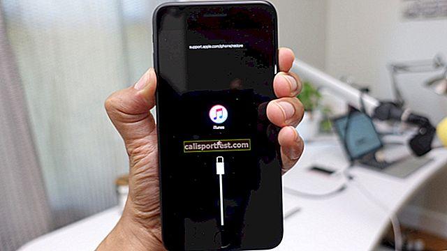 Kako popraviti 'iPhone se ne može povezati s iTunesom'? (2021.)